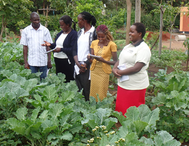Youth and Women in agriculture