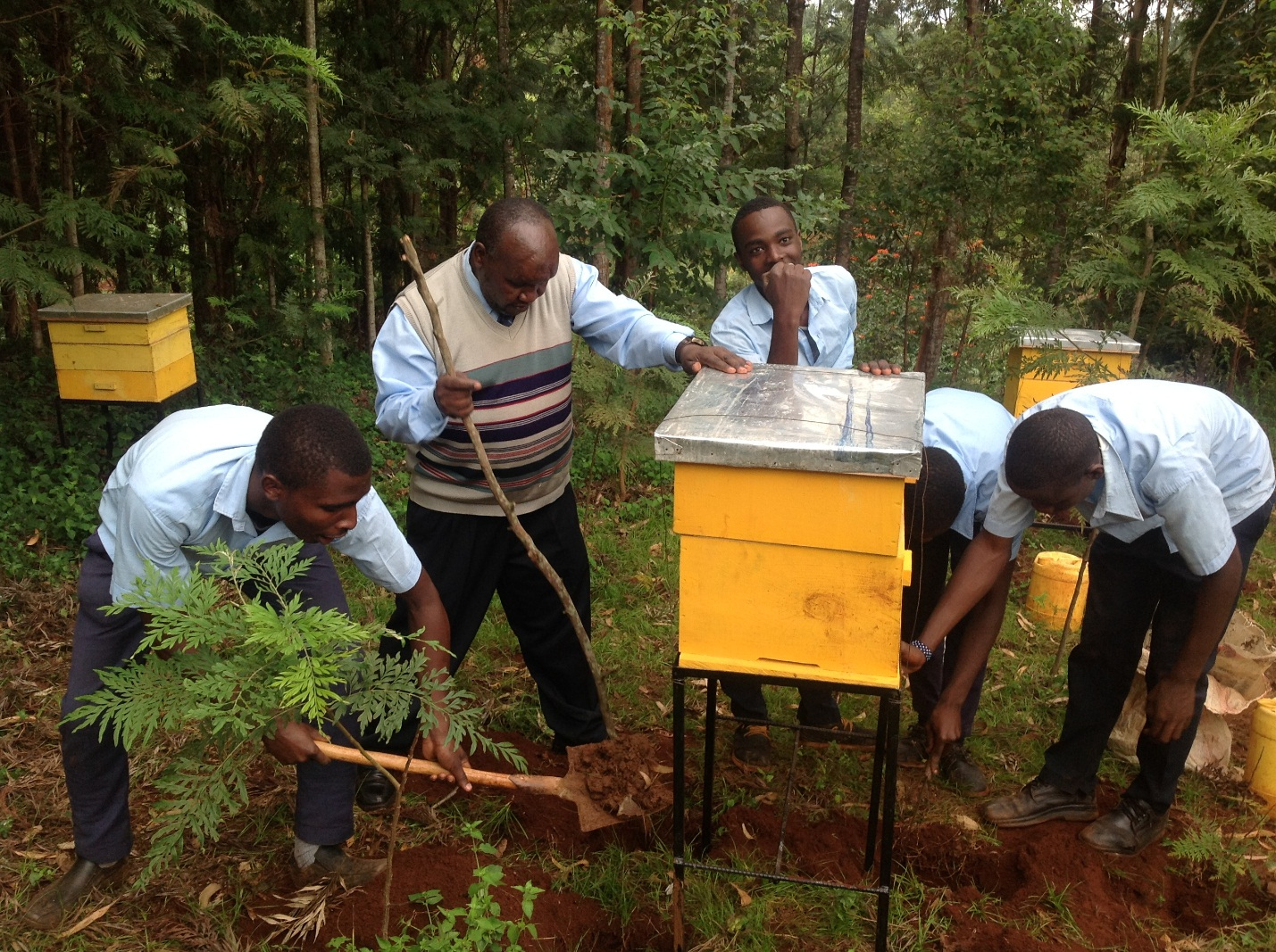 Students  and  Kiini Sustainable Initiative staff installing a beehive